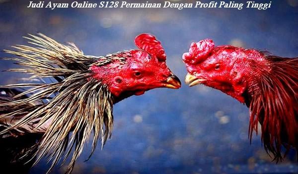 Judi Ayam Online S128 Permainan Dengan Profit Paling Tinggi